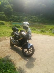 ホタルから求愛されていたKさんバイク