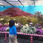 「大風景花壇」
