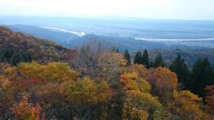 金倉山林道の紅葉