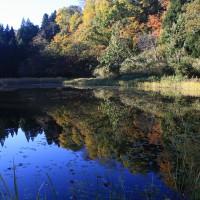 郡殿の池に映る紅葉