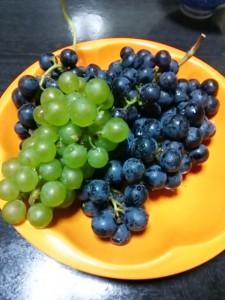 ぶどう収穫祭とワイン祭り @ 八色の森公園・アグリコアワイナリー | 南魚沼市 | 新潟県 | 日本
